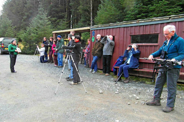 Visitors to Mull Eagle Watch over Easter at the hide